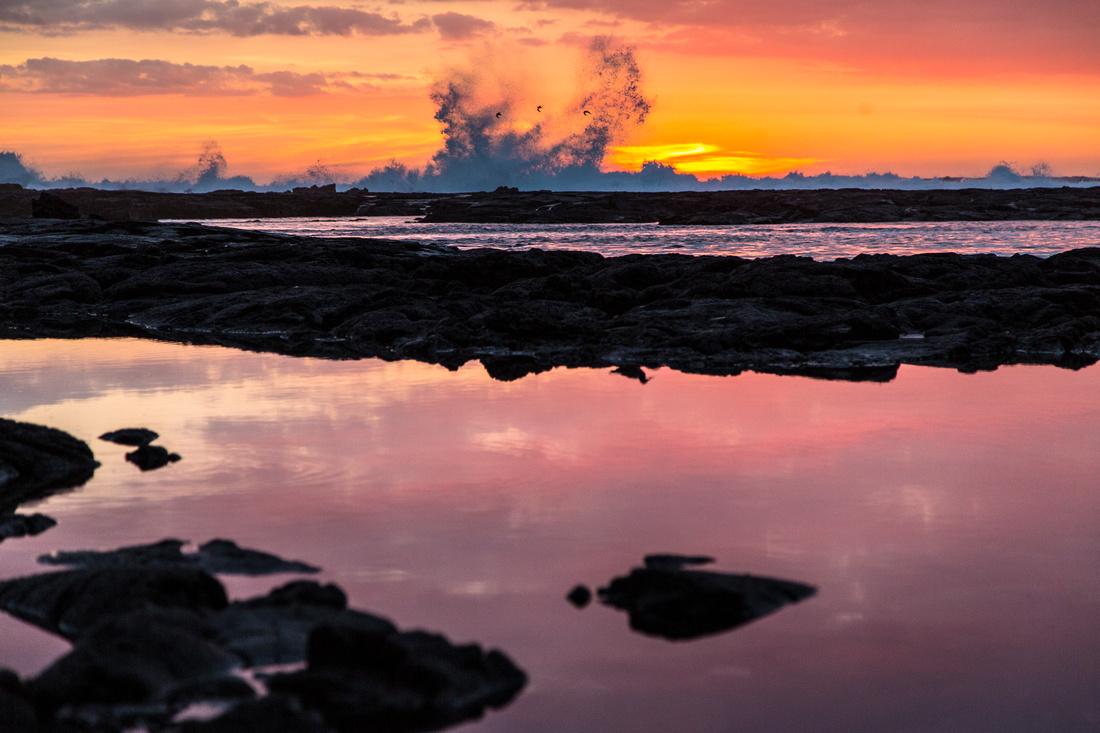 Pu'uhonua O Honaunau Shorebird Sunset