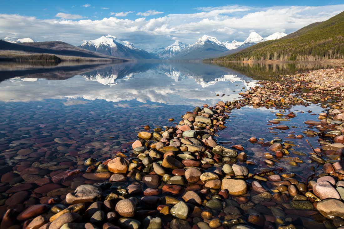 Lake McDonald Shoreline