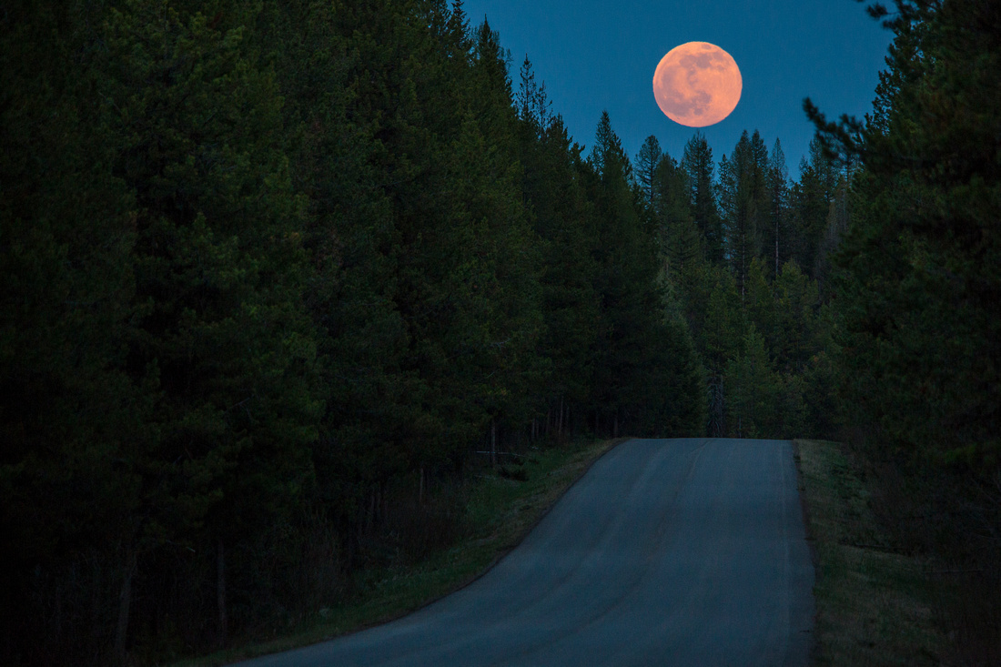 Moonrise over Camas Road