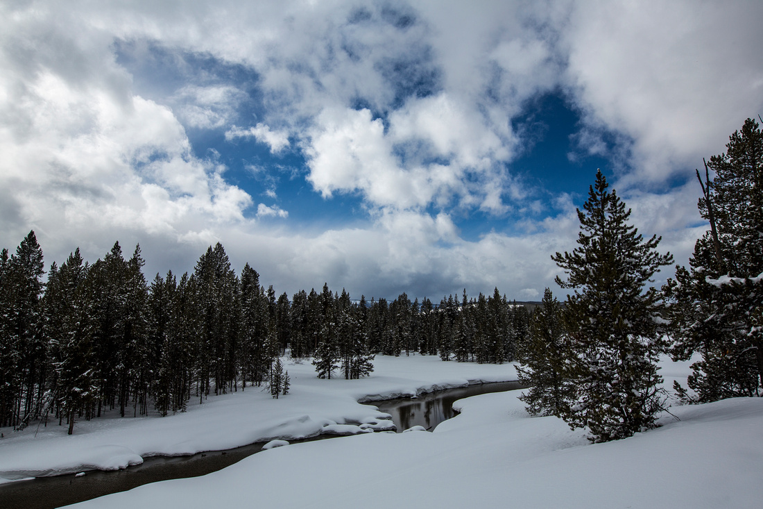 Polecat Creek