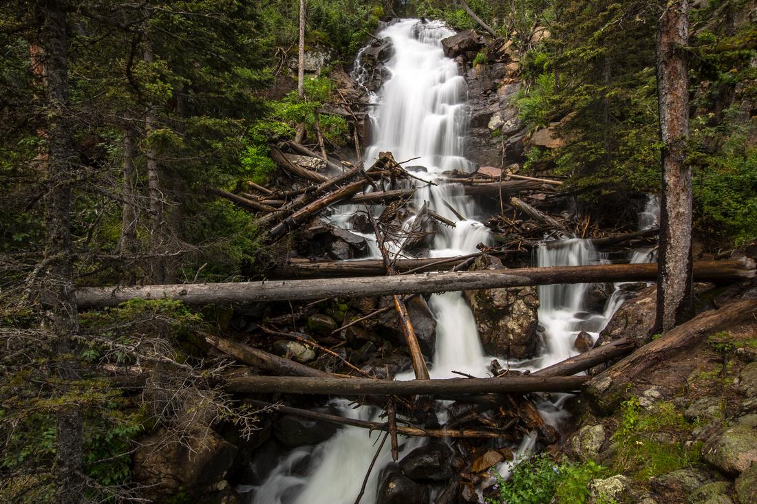 Fern Falls Landscape