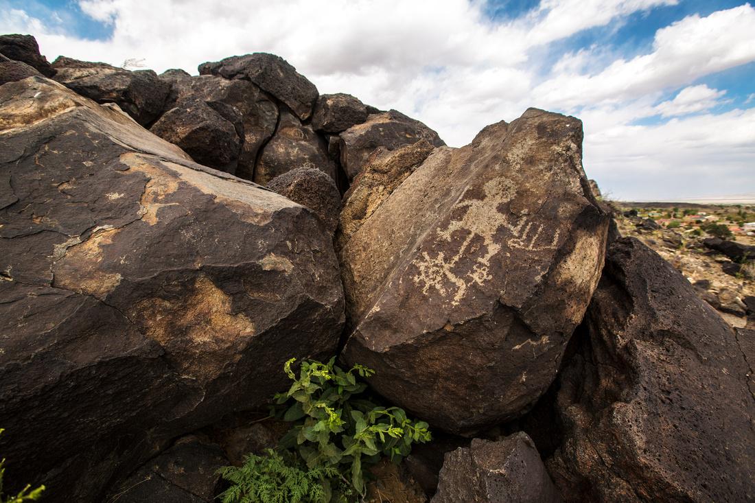 Boca Negra Canyon Rim Petroglyphs