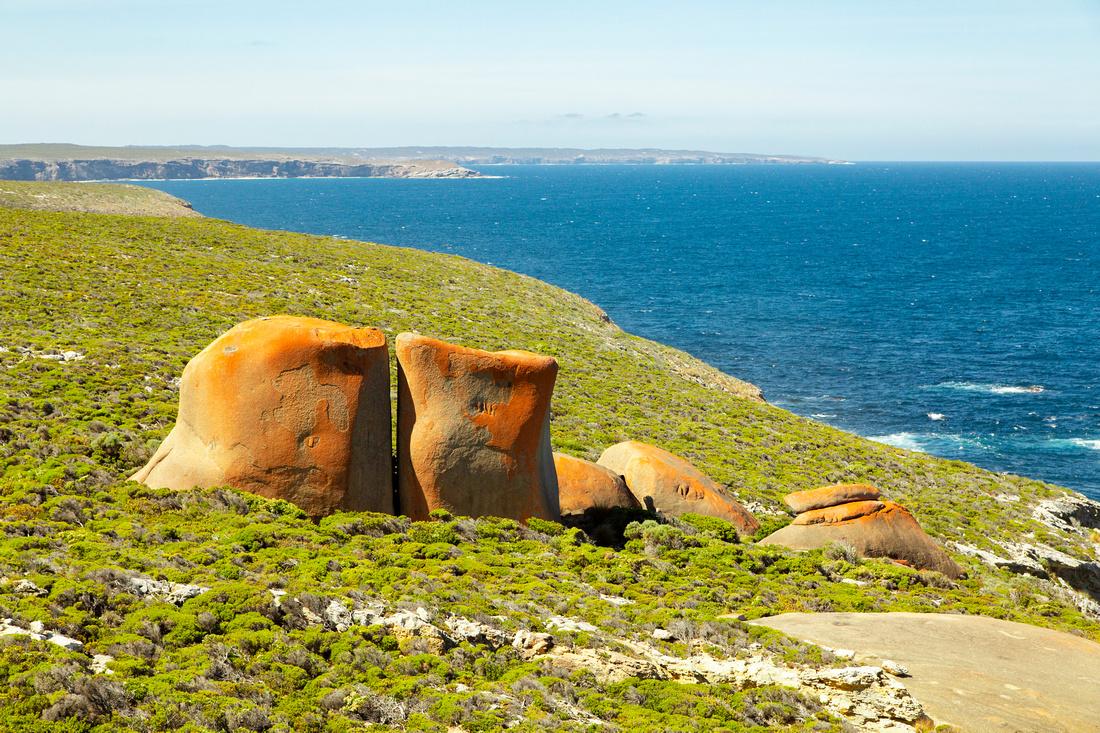 Remarkable Rocks indeed (2)