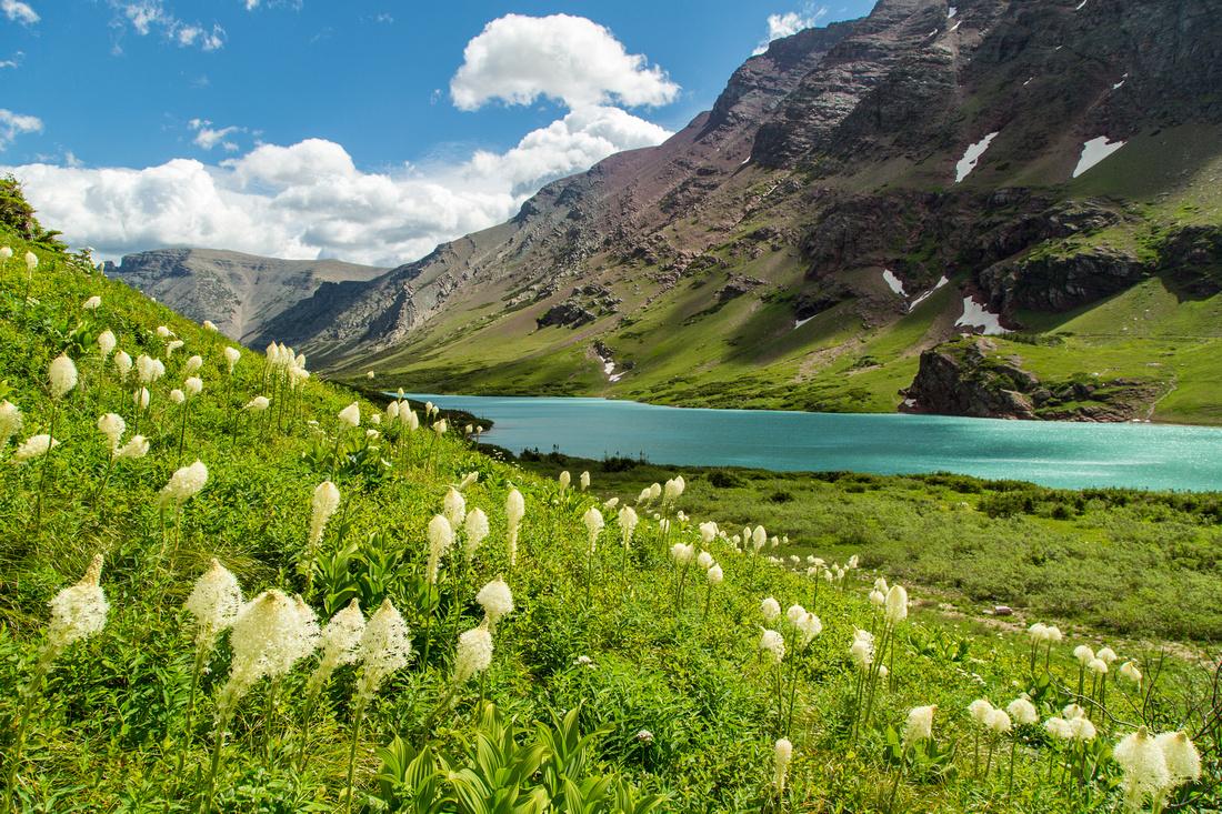 Cracker Lake and Beargrass