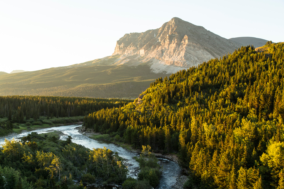 Wynn Mountain and Swiftcurrent Creek Sunrise