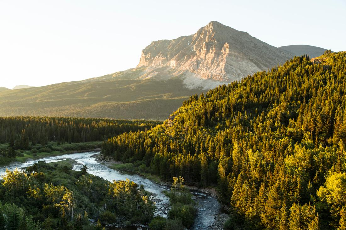 Wynn Mountain and Swiftcurrent Creek Sunrise