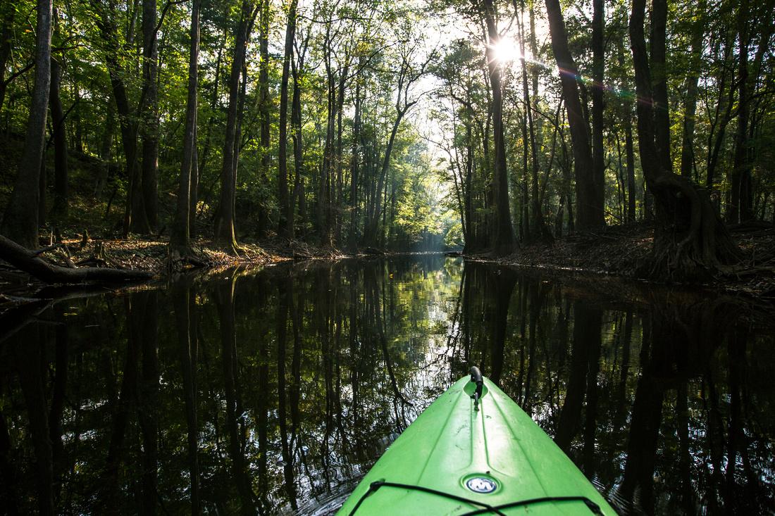 Kayaking Cedar Creek