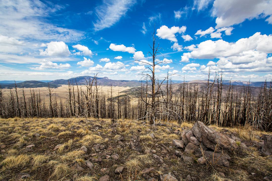 Cerro Grande Peak View