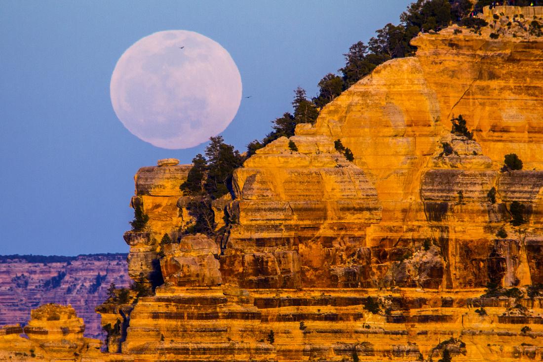 Full Moon Rise from Yavapai Point