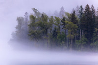 Foggy Lake McDonald