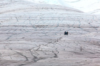 Hikers on the Root Glacier