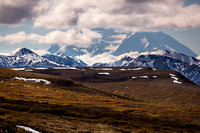 Denali from Sable Pass