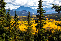 Golden Aspens and Pyramid Mountain (2)