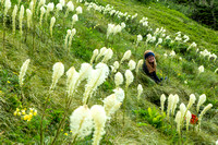 Emily in the Beargrass (2)