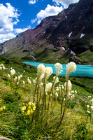Cracker Lake and Beargrass Portrait