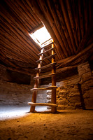 Spruce Tree House Kiva