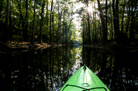 Kayaking Cedar Creek
