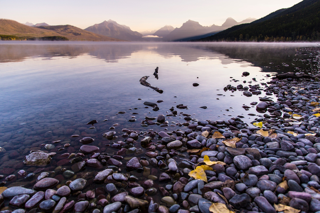 Lake McDonald Fall Shoreline