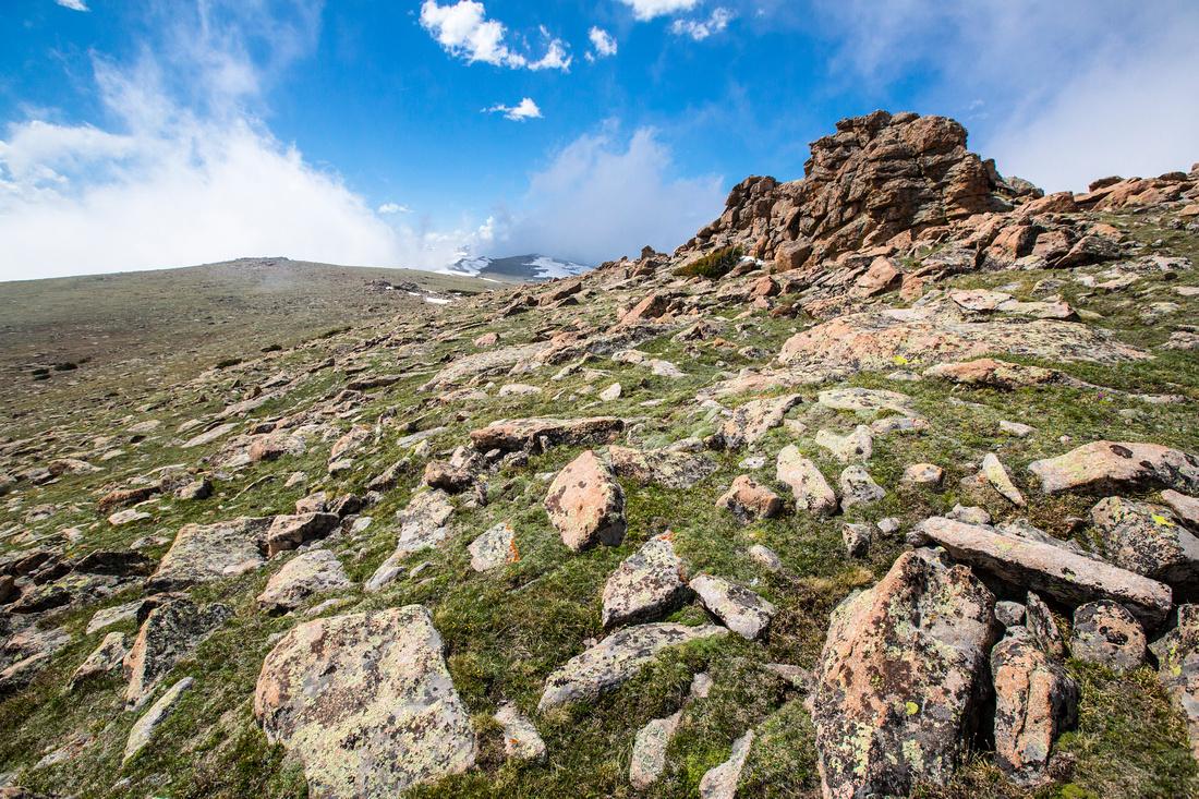 Ute Trail Alpine