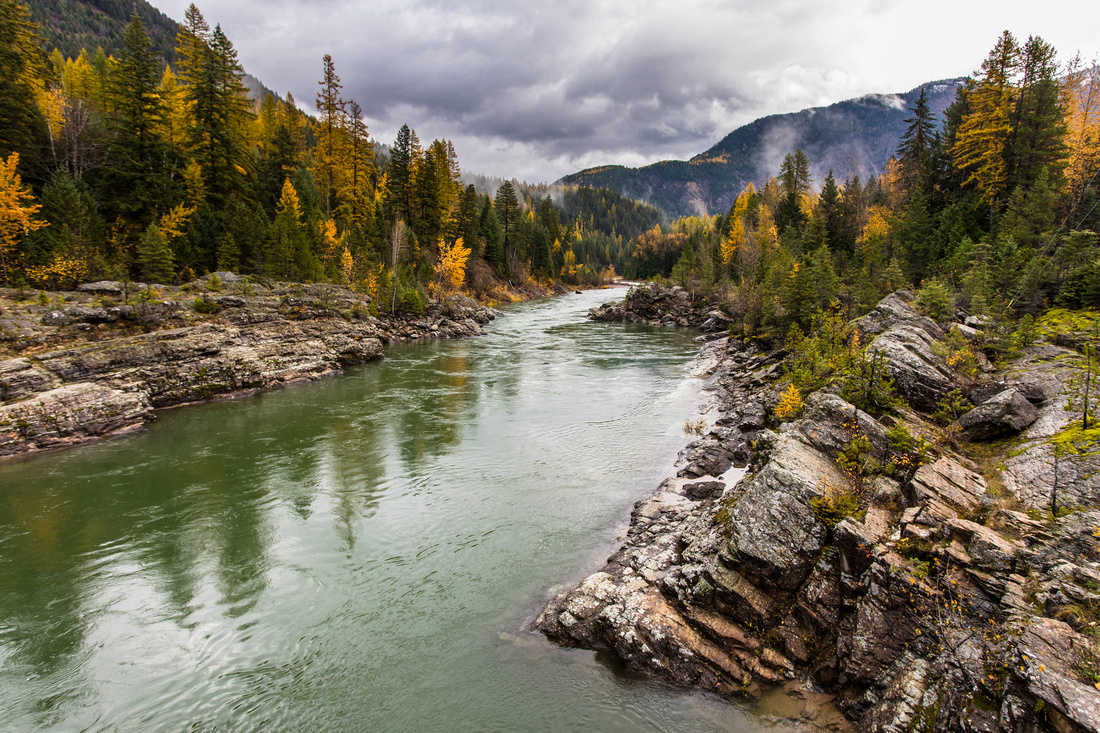 Middle Fork of the Flathead From the Belton Bridge