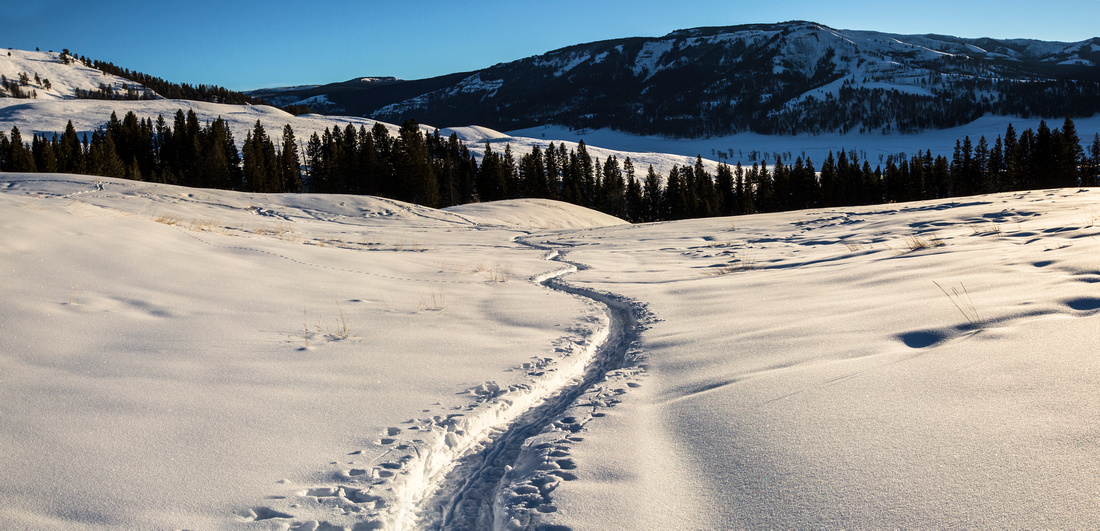 Snowshoeing in Lamar Valley
