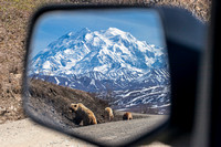 Side View Mirror in Denali