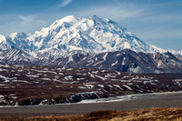 Denali From Eielson Bluffs in Spring