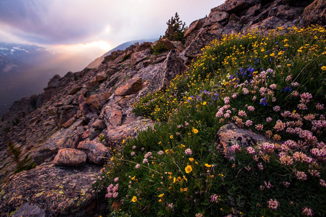 South Ute Trail Ridge Sunset