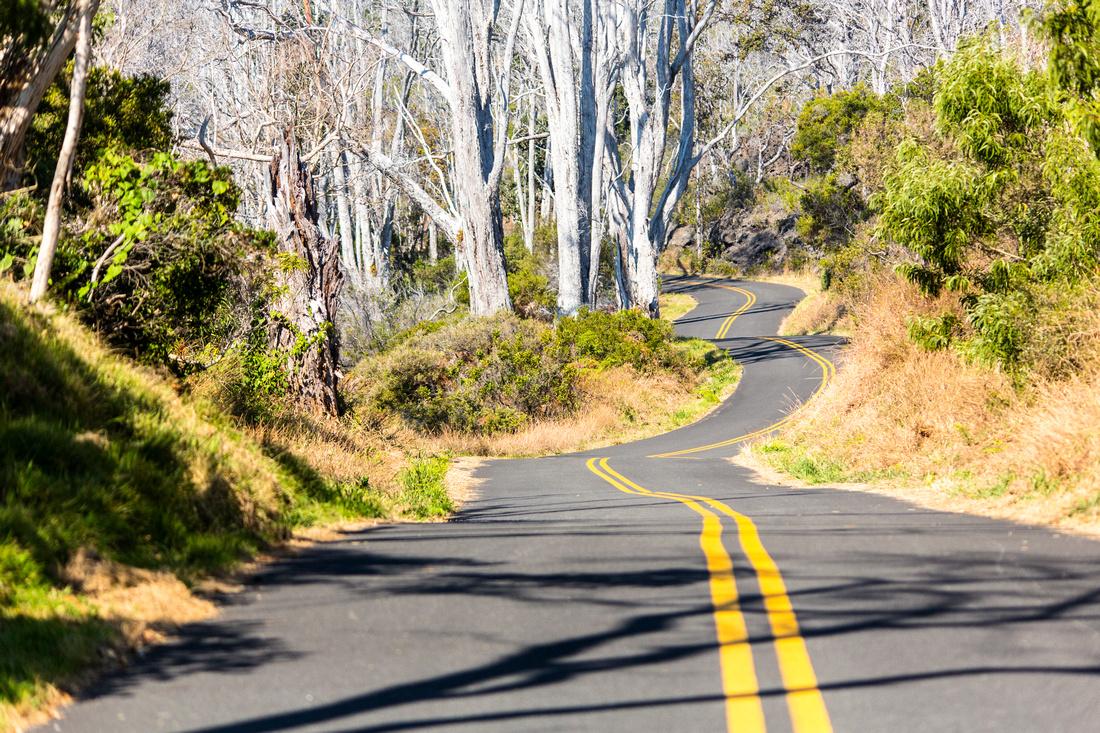 Mauna Loa Access Road