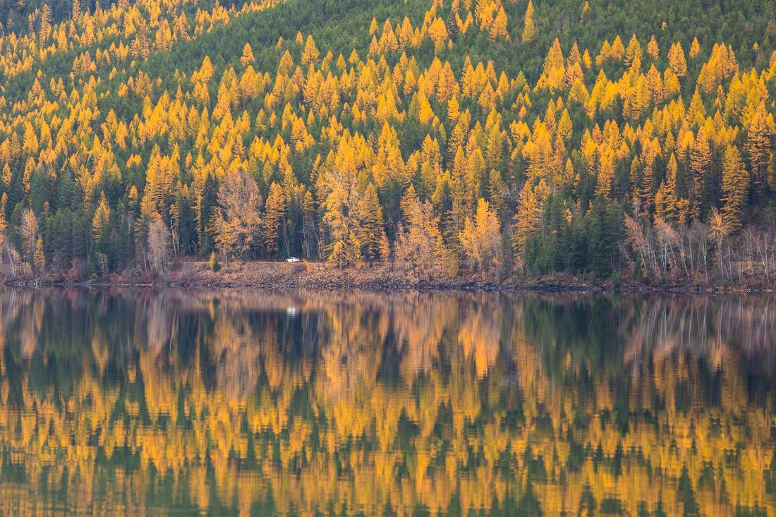Fall Drive Along Lake McDonald 10.21.16