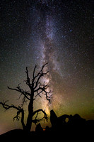 Milky Way, Juniper, and Turret Arch