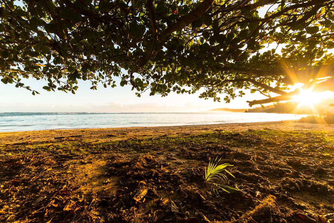 Sunrise at 'Anini Beach